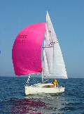 Baltic 2004: Blue Lightning sailing with pink spinnaker, May 2004